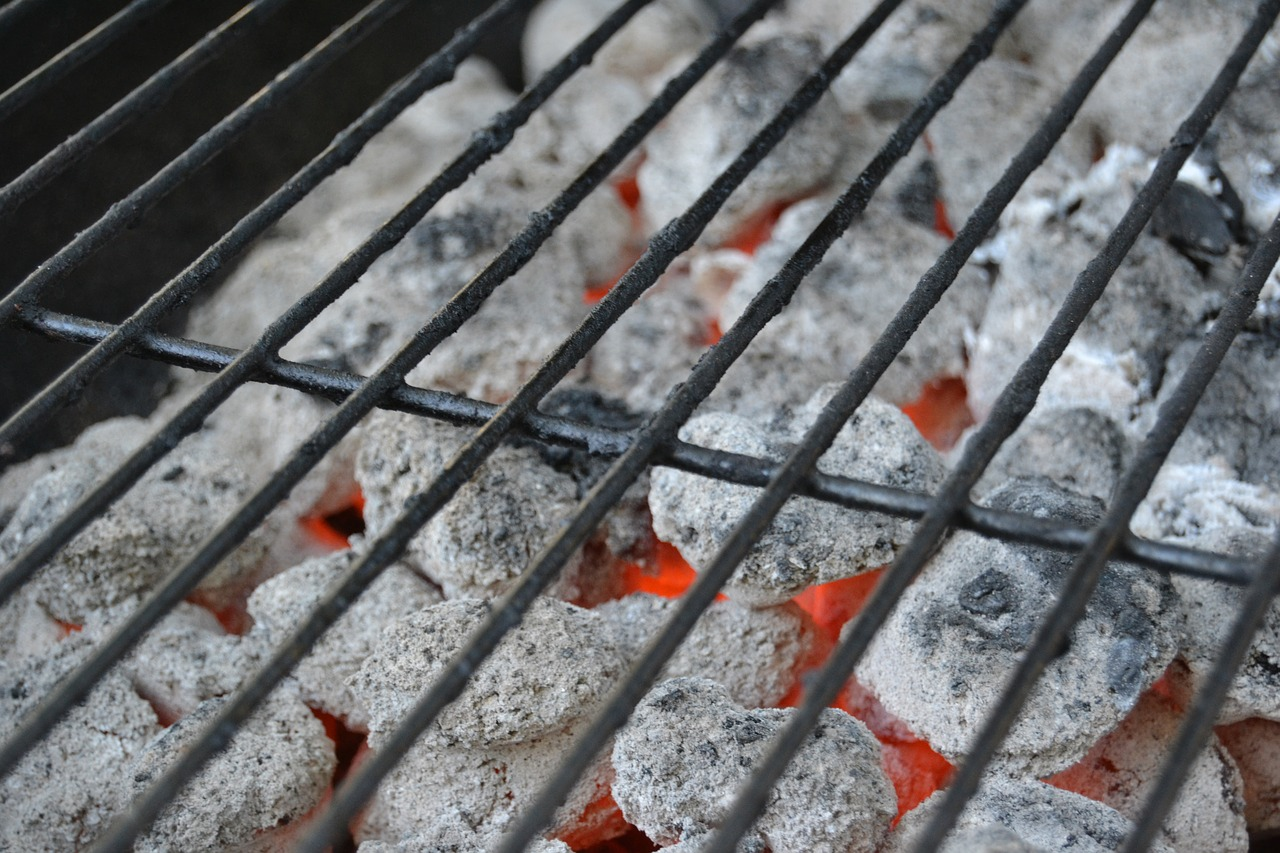 Charcoal Grill Basics - Beginners Guide